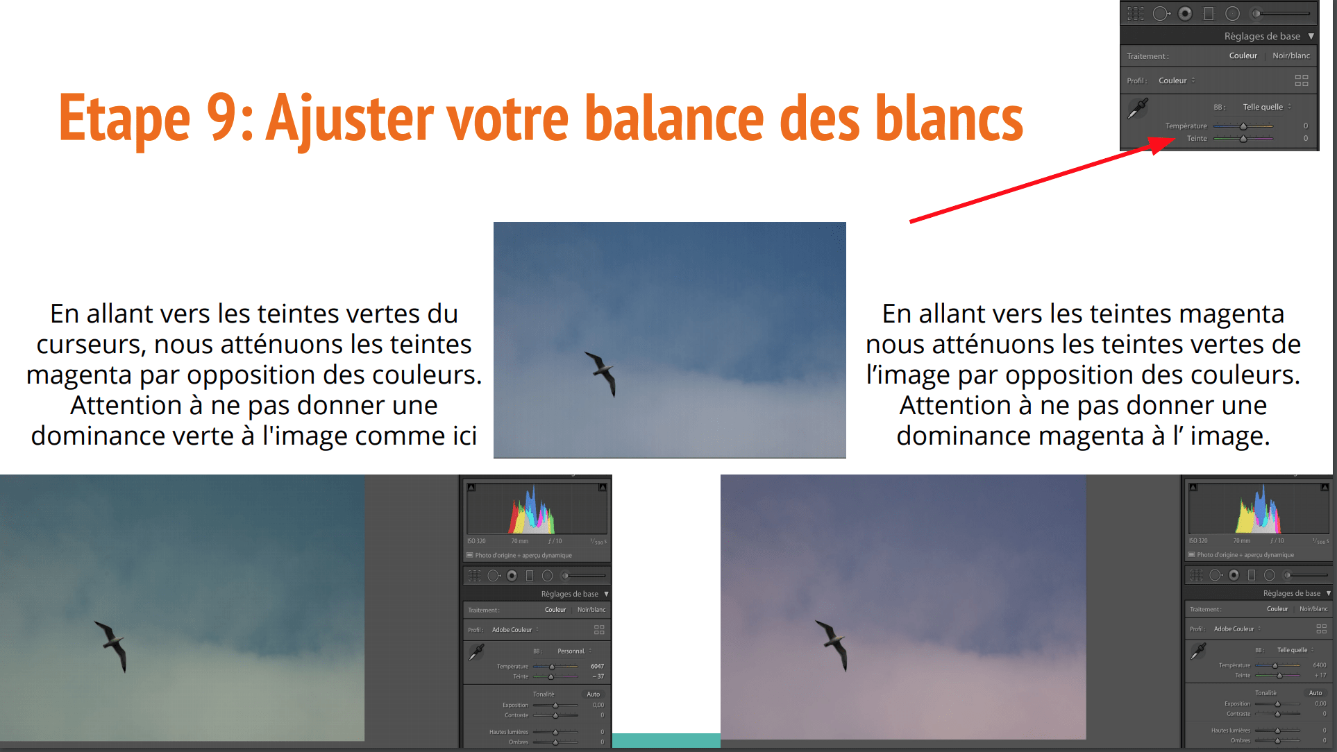Balance Blanc Tutoriel Lightroom Français